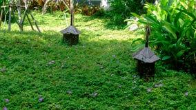 Trädgårds- semesterort Thailand i khaoyaien Royaltyfri Foto