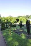 Trädgårds- sikt från Sanssouci i Potsdam, Tyskland royaltyfri bild