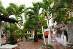 Trädgårds- sikt med träd, uteplats i sommarsemesterorten (Tolu, Colombia) Fotografering för Bildbyråer