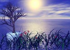 trädgårds- sjösidasolnedgång Arkivfoton