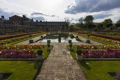 trädgårds- sjunket Royaltyfri Bild