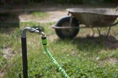 trädgårds- slang för 300 canon D Royaltyfria Bilder