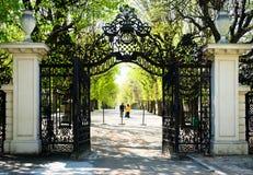 trädgårds- slottschonbrunnvienna walkway royaltyfria bilder