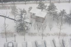trädgårds- snow royaltyfria foton