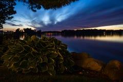 Trädgårds- solnedgång för Hosta Royaltyfri Fotografi