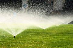 Trädgårds- spridare på den gröna gräsmattan Arkivfoton