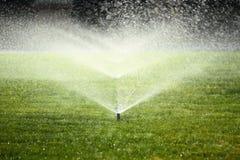 Trädgårds- spridare på den gröna gräsmattan Arkivfoto