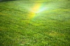 Trädgårds- spridare på den gröna gräsmattan Fotografering för Bildbyråer