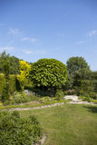 trädgårds- srping Arkivbild