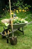 trädgårds- stående Royaltyfri Fotografi