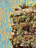 trädgårds- stads- Arkivbild