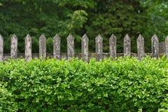 Trädgårds- staket Arkivfoto