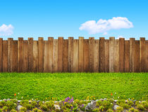 Trädgårds- staket royaltyfri bild
