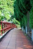 Grön trädgård Arkivbilder