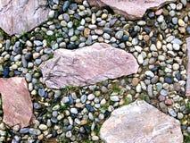 trädgårds- stenwalkway Arkivbild