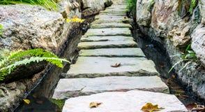 trädgårds- stenwalkway arkivfoto