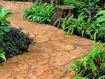 trädgårds- stenwalkway Royaltyfri Fotografi
