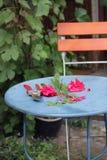 trädgårds- tabell Arkivfoto