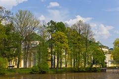 trädgårds- taurian Royaltyfri Fotografi
