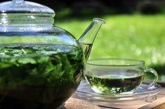 trädgårds- tea Arkivfoton