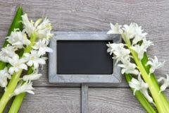 Trädgårds- tecken och två hyacintblommor royaltyfria bilder