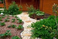 trädgårds- trädgårdar hamilton New Zealand för design Bana i trädgården, blommor med tegelstenbanor Omsorgen av trädgårds- växter royaltyfri fotografi
