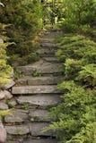 trädgårds- trappa arkivbild