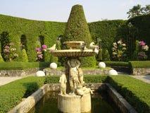 trädgårds- tropisk nongnooch Royaltyfria Foton