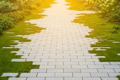 Trädgårds- trottoar - kullersten och gräs på trottoaren arkivbilder