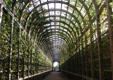trädgårds- tunnel Fotografering för Bildbyråer