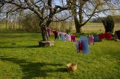 trädgårds- tvätteri Royaltyfria Bilder
