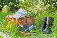 Trädgårds- utrustning Arkivfoto