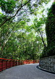 trädgårds- väg Arkivfoton