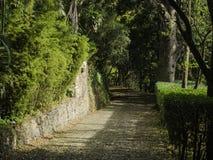 Trädgårds- vägar Royaltyfria Foton