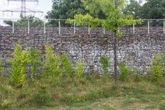 Trädgårds- vägg med ängen Arkivbild