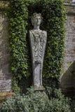 Trädgårds- väggstaty som inramas av murgröna- och brachyglottisväxter Royaltyfri Foto