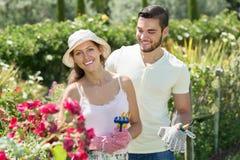 Trädgårds- växter för ung gift parplanta royaltyfri foto