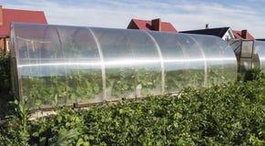Trädgårds- växthus Arkivfoton