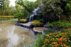 trädgårds- vattenfall Arkivbilder
