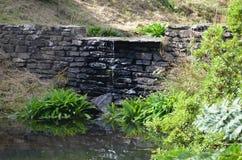 Trädgårds- vattenfall royaltyfri fotografi