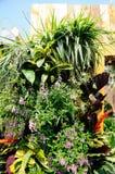 trädgårds- vertical Arkivfoto