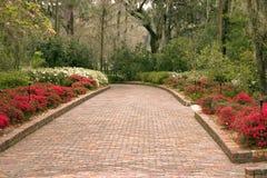 trädgårds- walkway wide royaltyfri bild