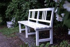 trädgårds- white för bänk Royaltyfri Bild