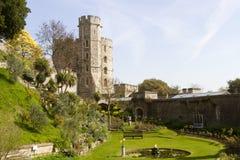 trädgårds- windsor för slott Arkivfoto