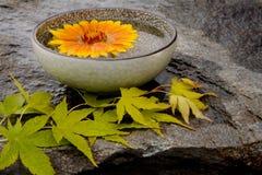 trädgårds- zen Royaltyfri Bild
