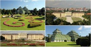 trädgårdslottschonbrunn wien Arkivbild
