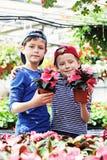 trädgårdsmästarar royaltyfria foton