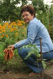 trädgårdsmästare Royaltyfri Bild