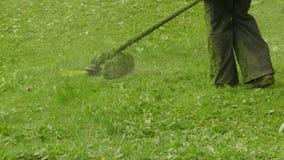 Trädgårdsmästare Is Cutting Grass med en hand - rymd gräsklippare stock video