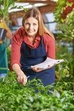 Trädgårdsmästare i trädgårds- mitt som kontrollerar växter Arkivbild